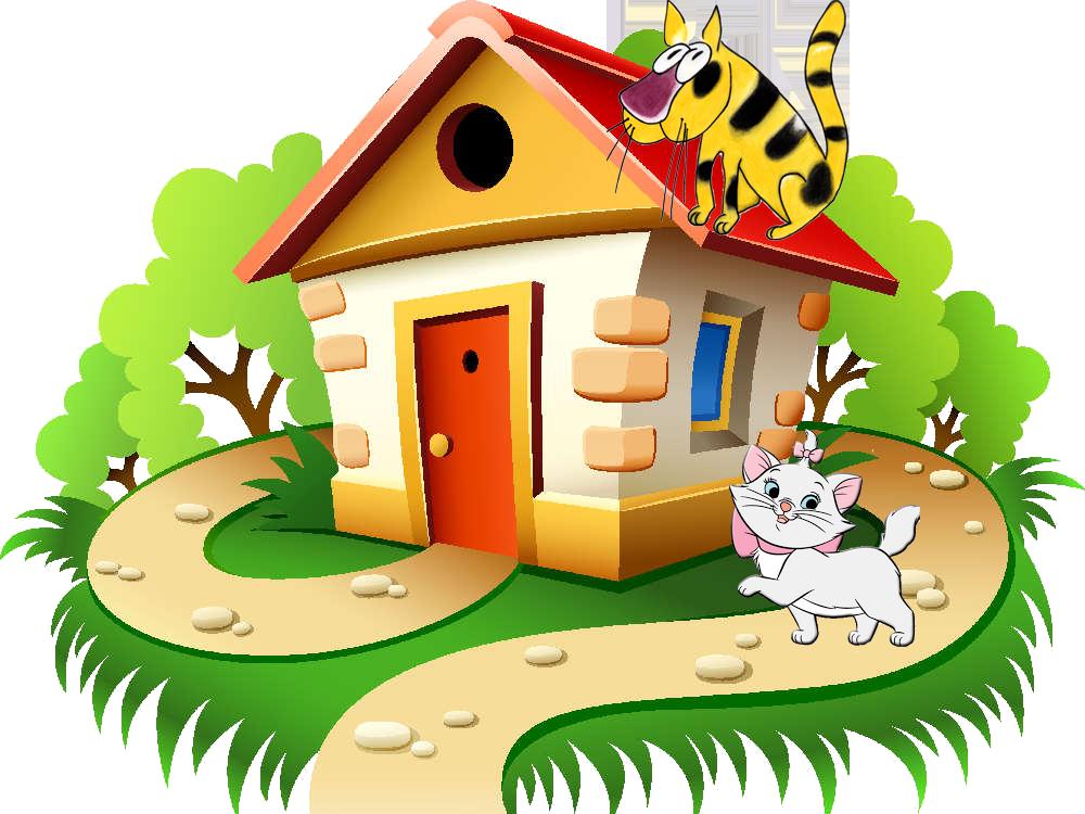 gato_casa