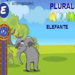 Animais – Plural