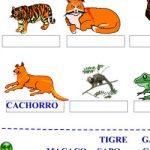 Alfabetizando com animais