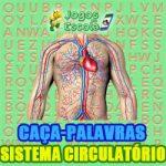 Caca-palavras Sistema circulatório