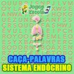 Caça-palavras Sistema endócrino