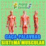 Caça-palavras Sistema muscular