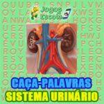 Caça-palavras Sistema urinário
