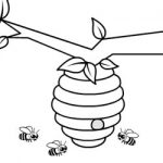 Colorir abelhas