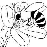 Colorir abelhas II
