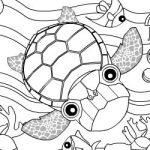 Colorir tartarugas