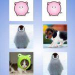 Memória dos animais