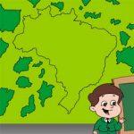 Monte o mapa do Brasil