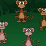 Quatro macacos