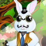 Vestir o coelho